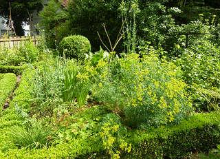 Finkens Garten - Kräuter- und Bauerngarten